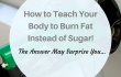 http://How%20to%20Burn%20Body%20Fat%20as%20Fuel%20&%20Lose%20Weight%20Faster