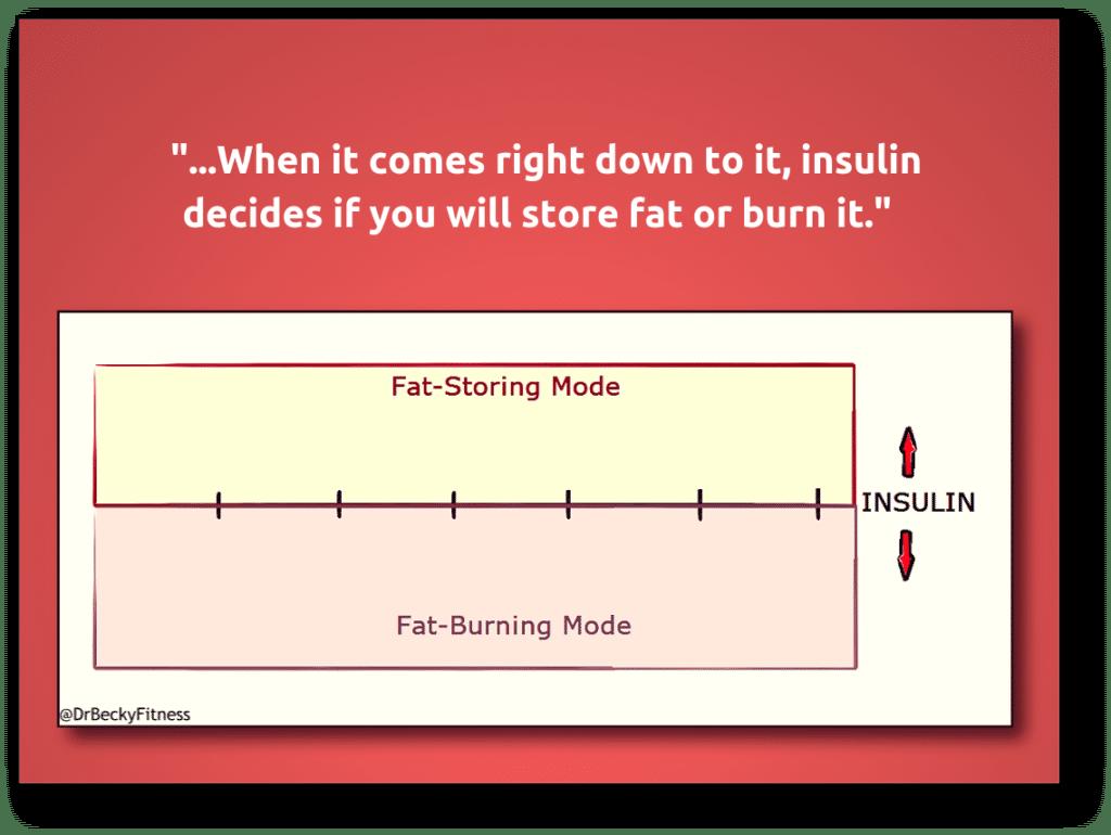 Belly Fat- insulin