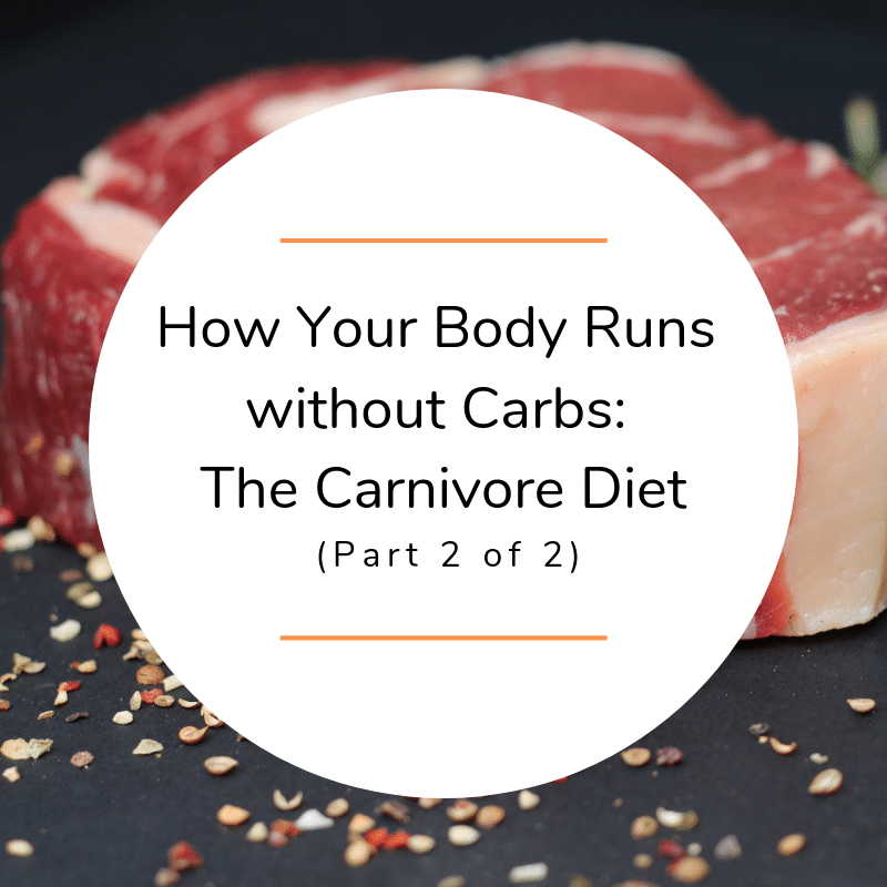 How Your Body Runs without Carbs: The Carnivore Diet (Part 2 of 2)